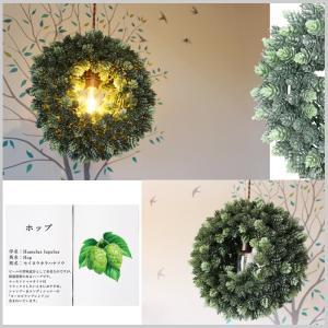 リース LEDライト ホップリース 照明 リビング ディスプレイ フェイクグリーン プレゼント カフェ 店舗 オリジナル BN|doanosoto|03