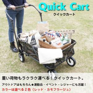 カート 運搬 運動会 イベント 行楽 ペット 移動 全2種類 QUICK CART クイックカート AZ2-184 CRT-998|doanosoto