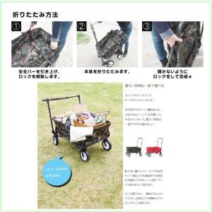 カート 運搬 運動会 イベント 行楽 ペット 移動 全2種類 QUICK CART クイックカート AZ2-184 CRT-998|doanosoto|04