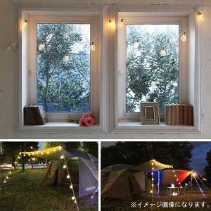 イルミネーション LED 室内用 パーティー バルブ ライト 30球 パーティ PAB10 CR-99 イベント 照明 ライト クリスマス doanosoto 03