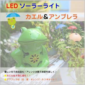 ソーラーライト LED カエル & アンブレラセット 節約 太陽光 電気代0円 お庭のお出迎え 陶器 4色変色 CR|doanosoto