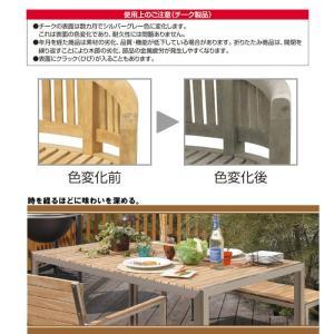 テーブル チェア ダイニングテーブル アームチェア 椅子 5点セット ガーデンファニチャー 天然木 Teak Style チークスタイル ライズ タカショー TK-p1241|doanosoto|04