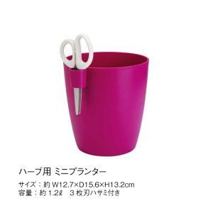 プランター ポット 植木鉢 elho エルホ ハーブ用 3枚刃 ハサミ付 チェリー ガーデニング TK|doanosoto