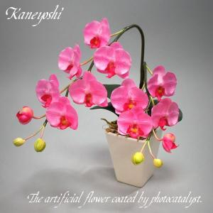 お祝い お供えの花 仏花 フラワーギフト 光触媒胡蝶蘭小輪 1本立ロング ピンク|docchan
