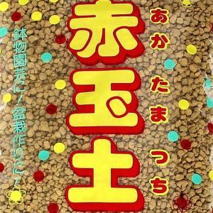 赤玉土 【小粒】 1.5L  赤玉土は万能用土として古くから使われている用土です。