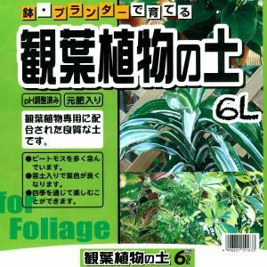 鉢・プランターで育てる 観葉植物の土 6L 元肥入り、pH調...