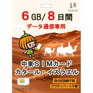 カタール プリペイド SIMカード 4G/3G データ通信 4GB/8日間 AIS Sim2Fly ...