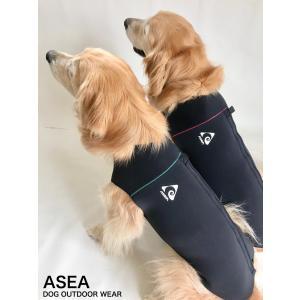 ドッグウェットスーツ 中型犬用 4号サイズ|dog-and-fishing