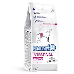 FORZA10 フォルツァディエチ インテスティナル アクティブ 胃 腸 10kg 療法食 フォルツァ10|dog-k9