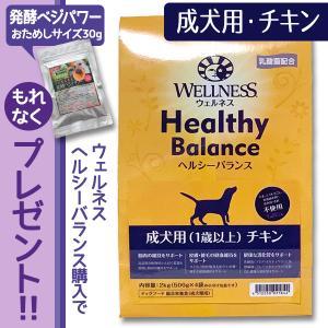 ウェルネスヘルシーバランスドッグフード 成犬用(1歳以上) チキン 6kg(500g×4個)|dog-sagara