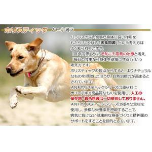 成犬用ドッグフード ANF ケイナイン ホリスティック 3kg  正規品 dog-sagara 03