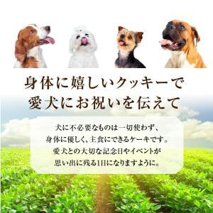 犬用 名入れ クッキー(ネーム入り クッキー)無添加 犬の誕生日 ケーキ 犬用ケーキと一緒にどうぞ【クール便】|dogdiner|11