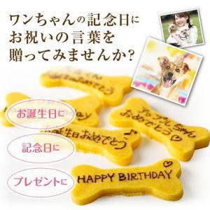 犬用 無添加・クッキー(名入れ カボチャのクッキー)犬の誕生日のケーキ・クリスマスケーキと一緒にどうぞ|dogdiner|03