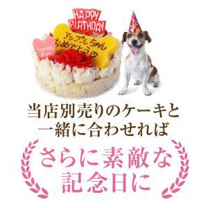 犬用 名入れ クッキー(ネーム入り クッキー)無添加 犬の誕生日 ケーキ 犬用ケーキと一緒にどうぞ【クール便】|dogdiner|09