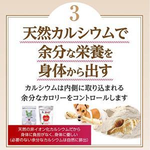 犬のダイエット 肥満に 無添加・サプリメント(ダイエット セット)【メール便・送料無料】|dogdiner|05