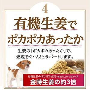 犬のダイエット 肥満に 無添加・サプリメント(ダイエット セット)【メール便・送料無料】|dogdiner|06
