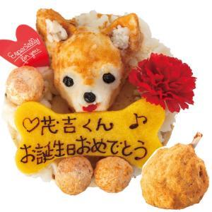 犬・ケーキ(無添加 似顔絵ケーキとギャートルズのお肉)【送料...