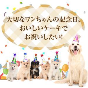 犬 ケーキ(無添加 誕生日ケーキ)似顔絵 犬用ケーキバースデー・クリスマスケーキ・誕生日のギフトに|dogdiner|02