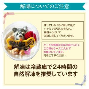 犬 ケーキ(無添加 誕生日ケーキ)似顔絵 犬用ケーキバースデー・クリスマスケーキ・誕生日のギフトに|dogdiner|13