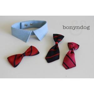 【bonyndog】ブルーオックスフォード(ネクタイセット)|doggies-kobe