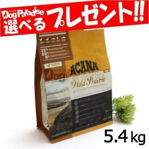 アカナ キャットフード レジオナル ワイルドプレイリーキャット 5.4kg|dogparadise