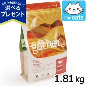 gather ギャザー フリーエーカーキャット 1.81kg|dogparadise