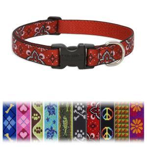 輸入 犬雑貨 首輪 大型犬/超大型犬用首輪LLサイズ ルパイン/LUPINE