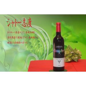 地酒を使ったワインボトル彫刻 シャトー志度|doikoubou|02