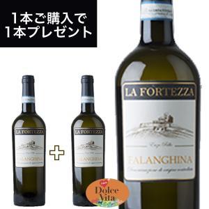 ファランギーナ DOC タブルノ 750ml イタリア直輸入 白ワイン LA FORTEZZA(ラ フォルテッツァ) dolcevita-kagurazaka