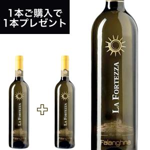 ファランギーナ IGT (FALANGHINA IGT)750ml イタリア直輸入 白ワイン LA FORTEZZA(ラ フォルテッツァ) dolcevita-kagurazaka