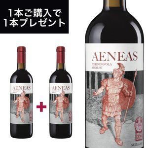 アエネアス(AENEAS) シチリア DOC 750ml イタリア直輸入 赤ワイン  Fazio(ファツィオ)業務用|dolcevita-kagurazaka