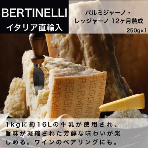 チーズ パルミジャーノ・レッジャーノ 12ヶ月熟成 250g イタリア直輸入 5袋まで送料同一 dolcevita-kagurazaka