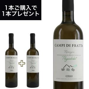 カンピ ディ フラッタ パガデビット DOC  750ml イタリア直輸入 白ワイン CELLI(チェッリ) dolcevita-kagurazaka