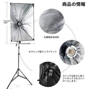 FOSITAN プロな写真撮影ソフトボックス照明キット 2M x3M背景布支援システム 豪華33件セット 800W 5500K 2*50*7|dole-store