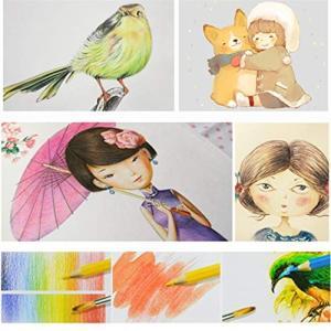 色鉛筆 36色セット 水彩色鉛筆 色えんぴつ 塗り絵用 画材 水彩画 六角軸 収納ケース付き 2B鉛筆付き dole-store