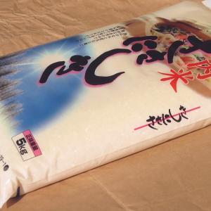 お米 5kg ササニシキ 白米 山形県 庄内 5kg×1袋 1年度産