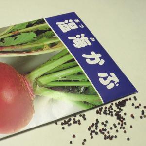 野菜の種/種子 温海かぶ 1袋 3mL ゆうパケット配送可/代引き不可