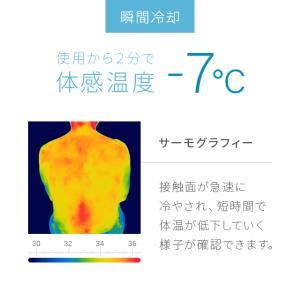 敷きパッド 冷却マット ジェルシート ひんやりマット 冷感 クールマット 90×140 洗える 防水 冷却ジェルマット スピードクーラー 塩|don2|06