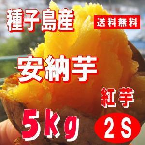サツマイモ 安納芋 紅 5kg SSミニサイズ 種子島産 チビコロ 71〜125個