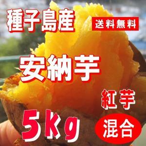 安納芋・紅 5kg Mサイズ/種子島産 農家から直送/蜜芋/...