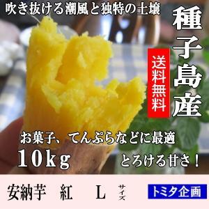 サツマイモ 安納芋紅 10kg Lサイズ 種子島産 22〜4...