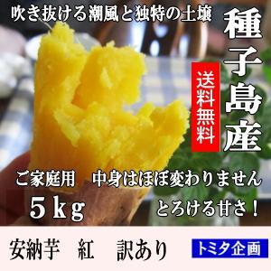 さつまいも 安納芋 紅 訳あり 5kg 種子島産 B品 2S〜2L混合