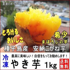 焼き芋 種子島安納芋 こがね 1.5kg Sサイズ 冷凍