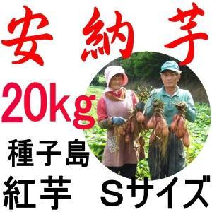 安納芋 種子島産/Sサイズ 20kg/越冬完熟安納芋/産地直...