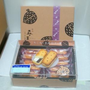 信州長野県のお土産 お菓子 洋菓子 ごろごろくるみのケーキ10個入り