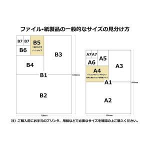 KINGJIM キングジム 冷蔵庫ピタッとファイル A4S 見開きポケットタイプ A4S 2921 白|donguri-tree|05
