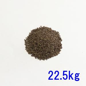 種子バミューダグラス 22.5kg 2200〜2800平米分|donoubukuro