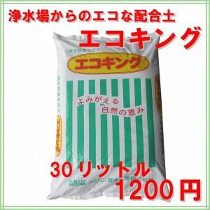 培養土 エコキング(環境を考える土) 30リットル |donoubukuro