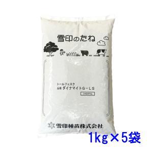 種子トールフェスク ダイナマイトLS 5kg 71〜333平米分|donoubukuro