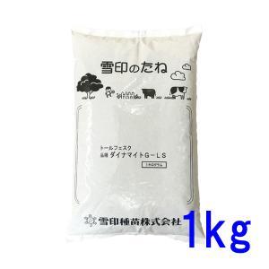 種子トールフェスク ダイナマイトLS 1kg 14〜66平米分|donoubukuro